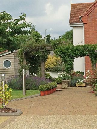 Thumbnail Flat to rent in Salterton Road, Exmouth