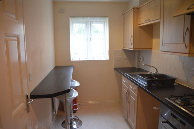 Thumbnail End terrace house to rent in Mckay Avenue, Torquay