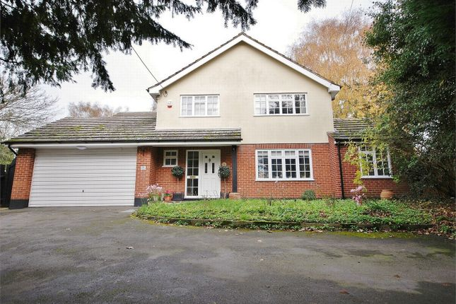 Thumbnail Detached house for sale in Colchester Road, White Colne, Essex