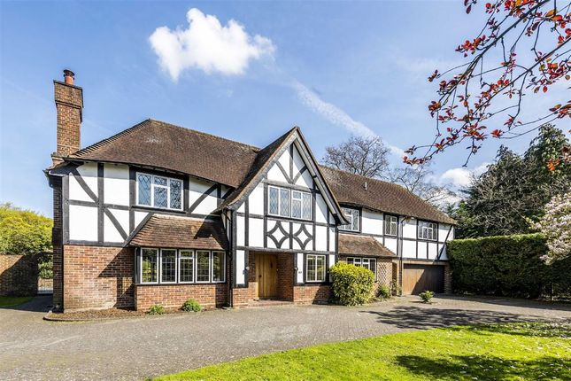 Thumbnail Property to rent in Silverdale Avenue, Walton-On-Thames
