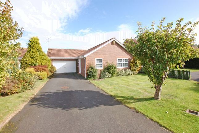 Thumbnail Bungalow for sale in Church Flatt, Ponteland, Newcastle Upon Tyne