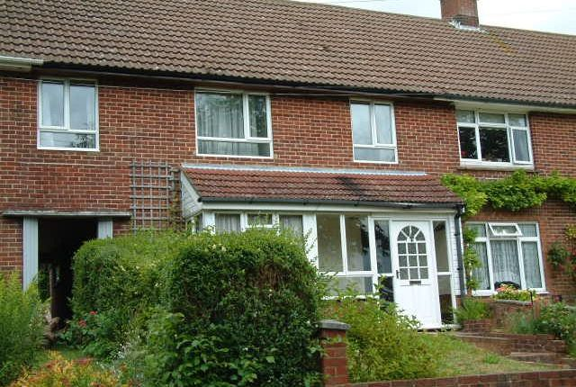 Thumbnail Terraced house to rent in Taplings Road, Winchester