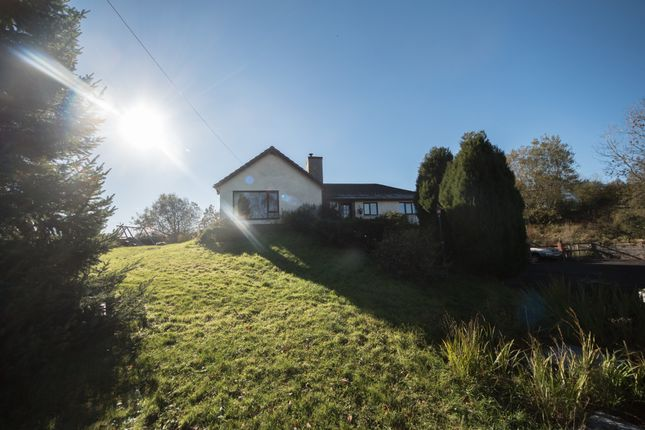 Thumbnail Detached bungalow for sale in Tynreithyn, Tregaron