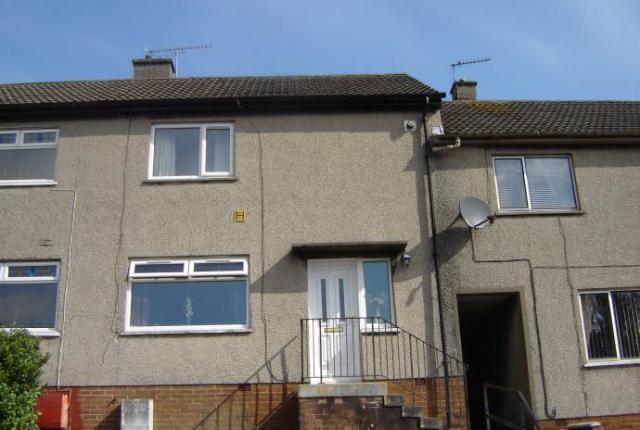 Thumbnail Property to rent in 101 Burnbank Road, Ayr
