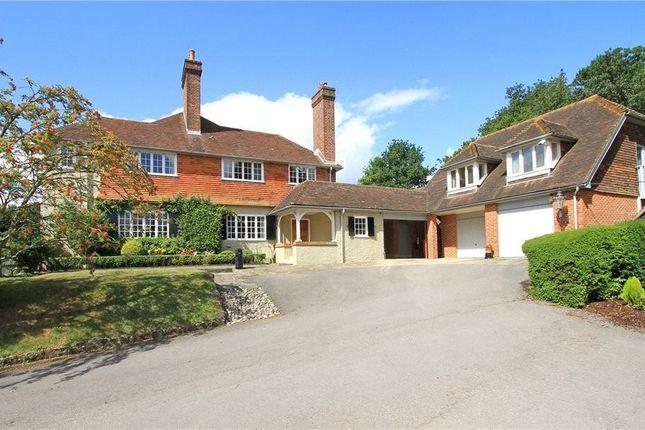 Thumbnail Detached house for sale in Heyshott, Midhurst