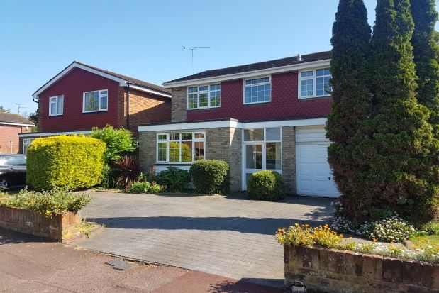 Thumbnail Property to rent in Barnstaple Road, Southend-On-Sea
