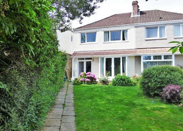 3 bed semi-detached house for sale in Hadland Terrace, West Cross, Swansea