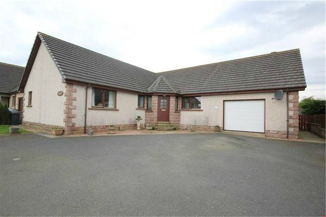 Thumbnail Detached bungalow for sale in New Deer, Turriff, Aberdeenshire