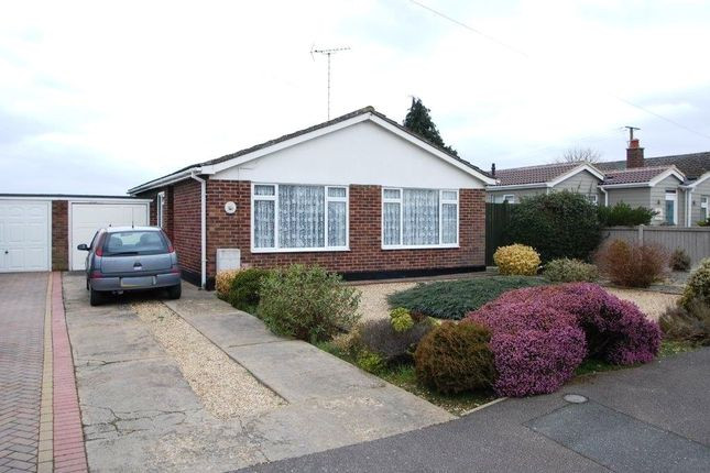 Thumbnail Detached bungalow for sale in Peakes Close, Tiptree, Colchester