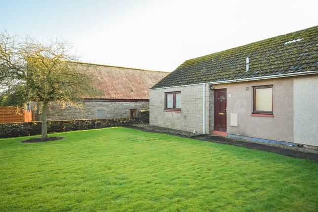 Thumbnail Bungalow to rent in Mid Row, Lunanhead, Forfar, Angus
