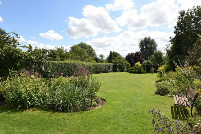 Thumbnail Property for sale in Mill Road, Sharnbrook, Bedford