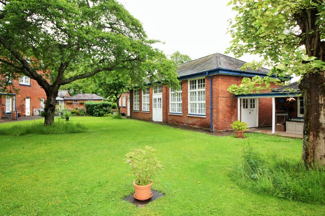 Thumbnail 2 bed semi-detached bungalow to rent in Western Road, Crediton