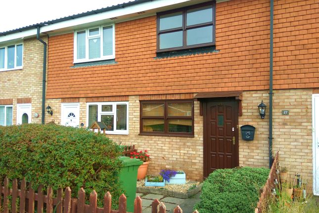 Thumbnail Terraced house to rent in Brighton Grove, Hereford