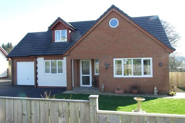 Thumbnail Bungalow for sale in Station Road, Llanwrtyd Wells