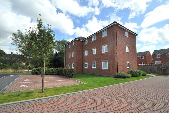 Thumbnail Flat to rent in Snowgoose Way, Burgess Brook, Newcastle