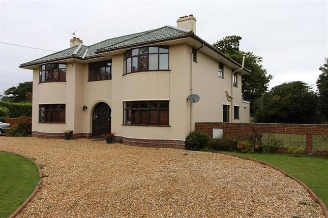 Thumbnail Detached house to rent in Chestnut Avenue, Barton On Sea, New Milton