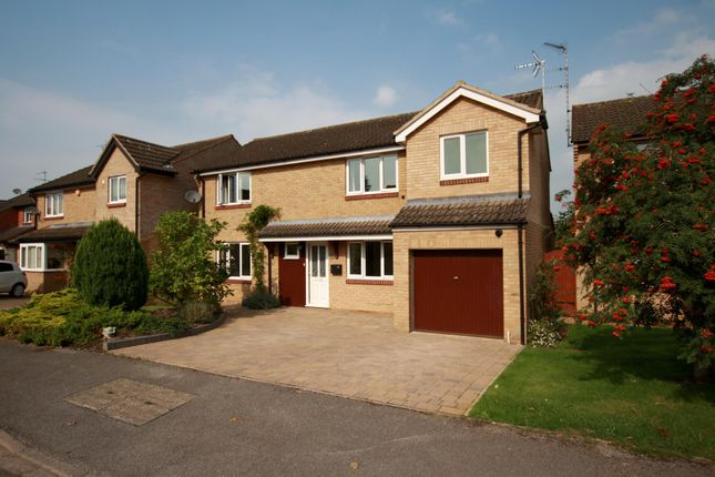 Thumbnail Detached house to rent in King William Drive, Cheltenham