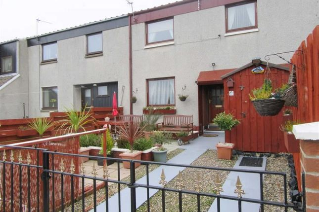 Thumbnail Property to rent in Highcliffe, Spittal, Berwick-Upon-Tweed
