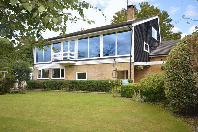 Thumbnail Detached house to rent in Hampden Hill, Beaconsfield