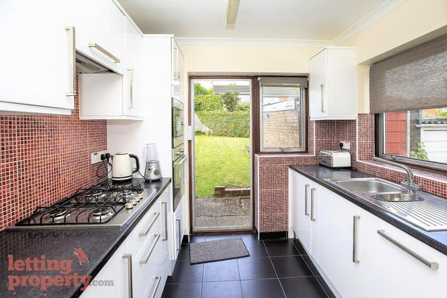 Thumbnail Semi-detached house to rent in Oakfields, Guildford