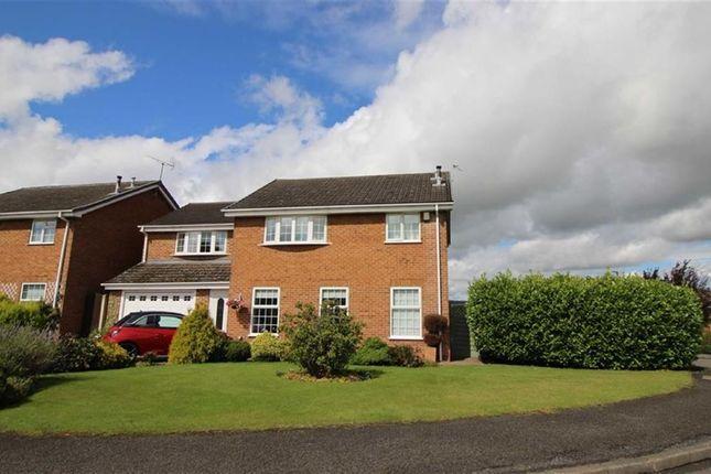 Thumbnail Detached house for sale in Devonshire Avenue, Ripley, Derbyshire