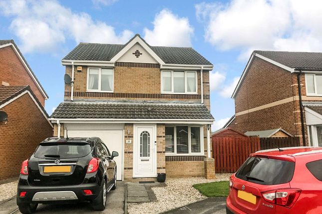 Thumbnail Detached house for sale in Birkdale Drive, Shiney Row, Houghton Le Spring