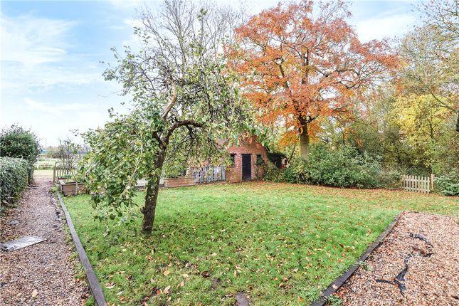 Garden 1 of Church Lane, Binfield, Berkshire RG42