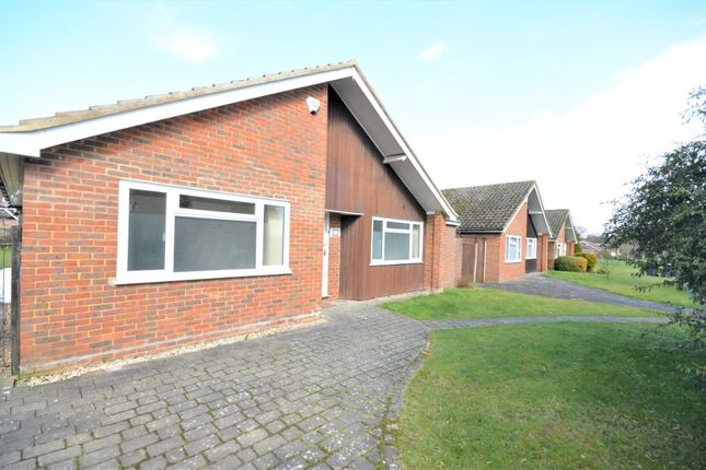 3 bed bungalow to rent in Crofton Road, Orpington BR6