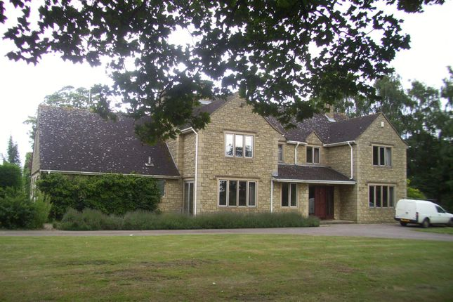 Thumbnail Detached house to rent in Wisbech Road, Welney, Wisbech