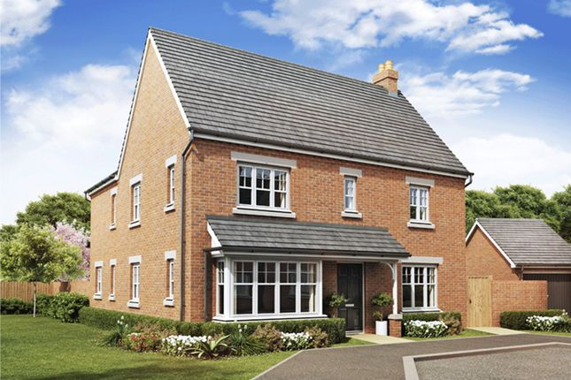 """Thumbnail Detached house for sale in """"Alnwick"""" at Greenkeepers Road, Great Denham, Bedford"""