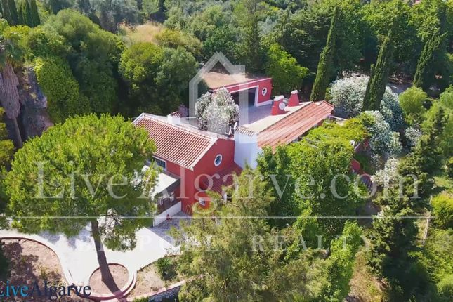 Spectacular Luxury Estate In The National Park Arrábida, Setúbal