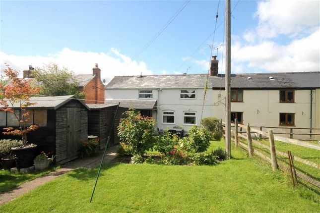 Thumbnail Cottage for sale in Upper Hasfield, Hasfield, Gloucester