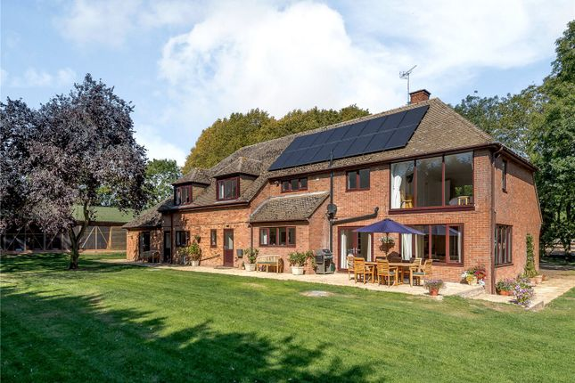 Thumbnail Equestrian property for sale in The Grange, Bythorn, Huntingdon, Cambridgeshire