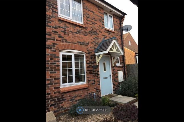 Thumbnail Semi-detached house to rent in St Crispins, Northampton