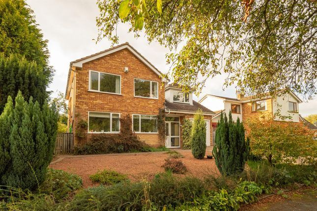 Thumbnail Detached house for sale in Oakwood Grove, Warwick