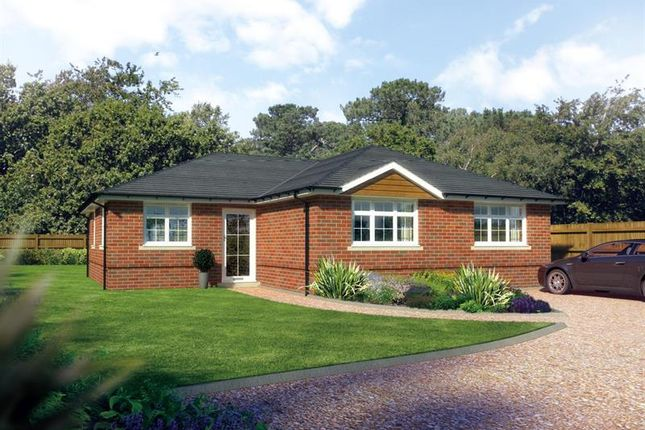 Thumbnail Bungalow for sale in Chesnut Grove, Milldown Road, Blandford Forum