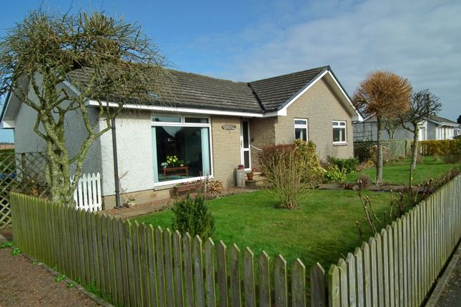 Thumbnail Detached bungalow for sale in 5 East End North, Chirnside