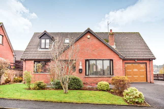 Thumbnail Detached house for sale in Thornhill, Banbridge