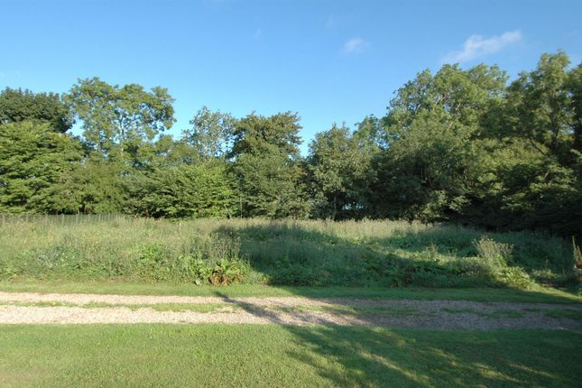 Thumbnail Land for sale in Horndean, Berwick-Upon-Tweed