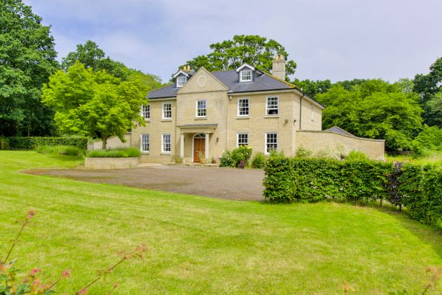 Thumbnail Detached house for sale in Borley Green, Bury St Edmunds, Suffolk