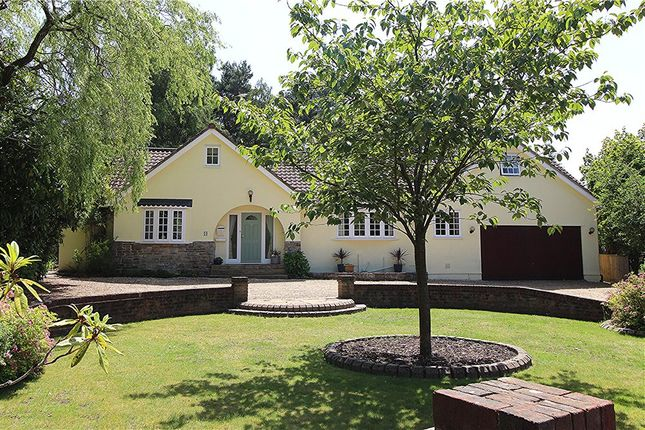 Thumbnail Detached house for sale in Ashley Heath, Ringwood, Hampshire