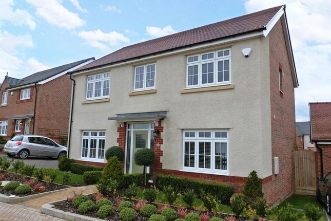 Thumbnail Detached house to rent in Blackcap Lane, Bracknell, Berkshire