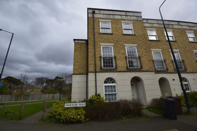 Thumbnail Terraced house to rent in Tarragon Road, Maidstone