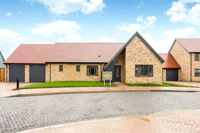 Thumbnail Detached bungalow for sale in The Orchards, Linton Road, Great Abington, Cambridge