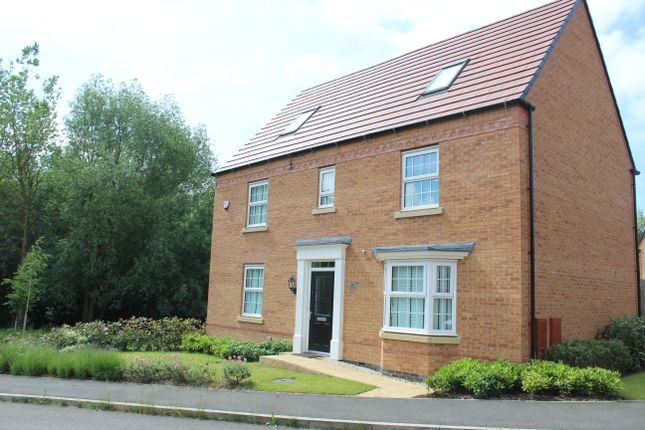 Thumbnail Detached house for sale in Irons Road, Northampton