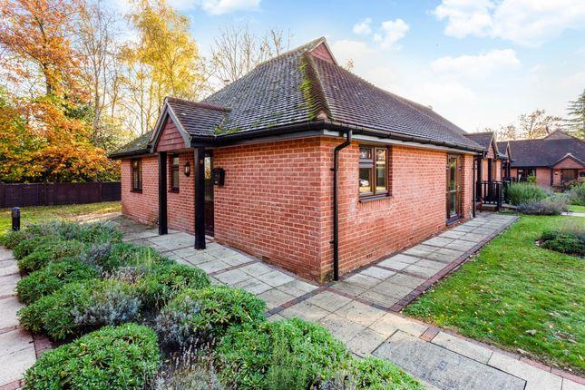 Thumbnail Bungalow to rent in Burton Park Road, Petworth