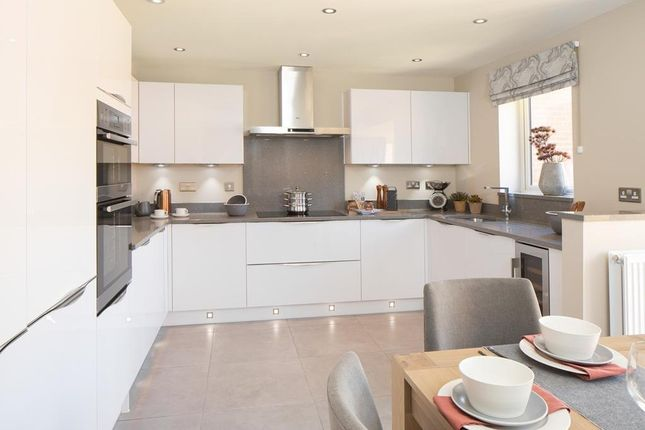 """Thumbnail Detached house for sale in """"Holden"""" at Whites Lane, New Duston, Northampton"""