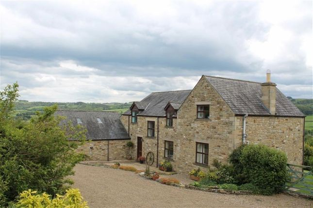 Thumbnail Detached house for sale in North Bank, Hexham