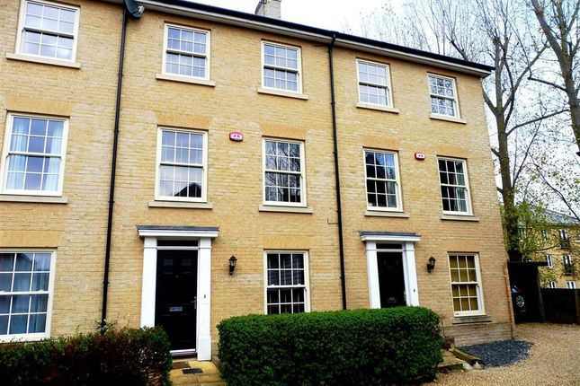Thumbnail Property to rent in Groves Close, Colchester