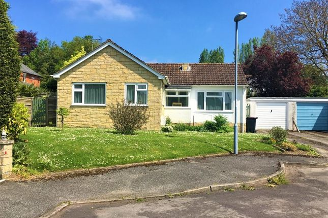 Thumbnail Detached bungalow for sale in The Butts, Child Okeford, Blandford Forum